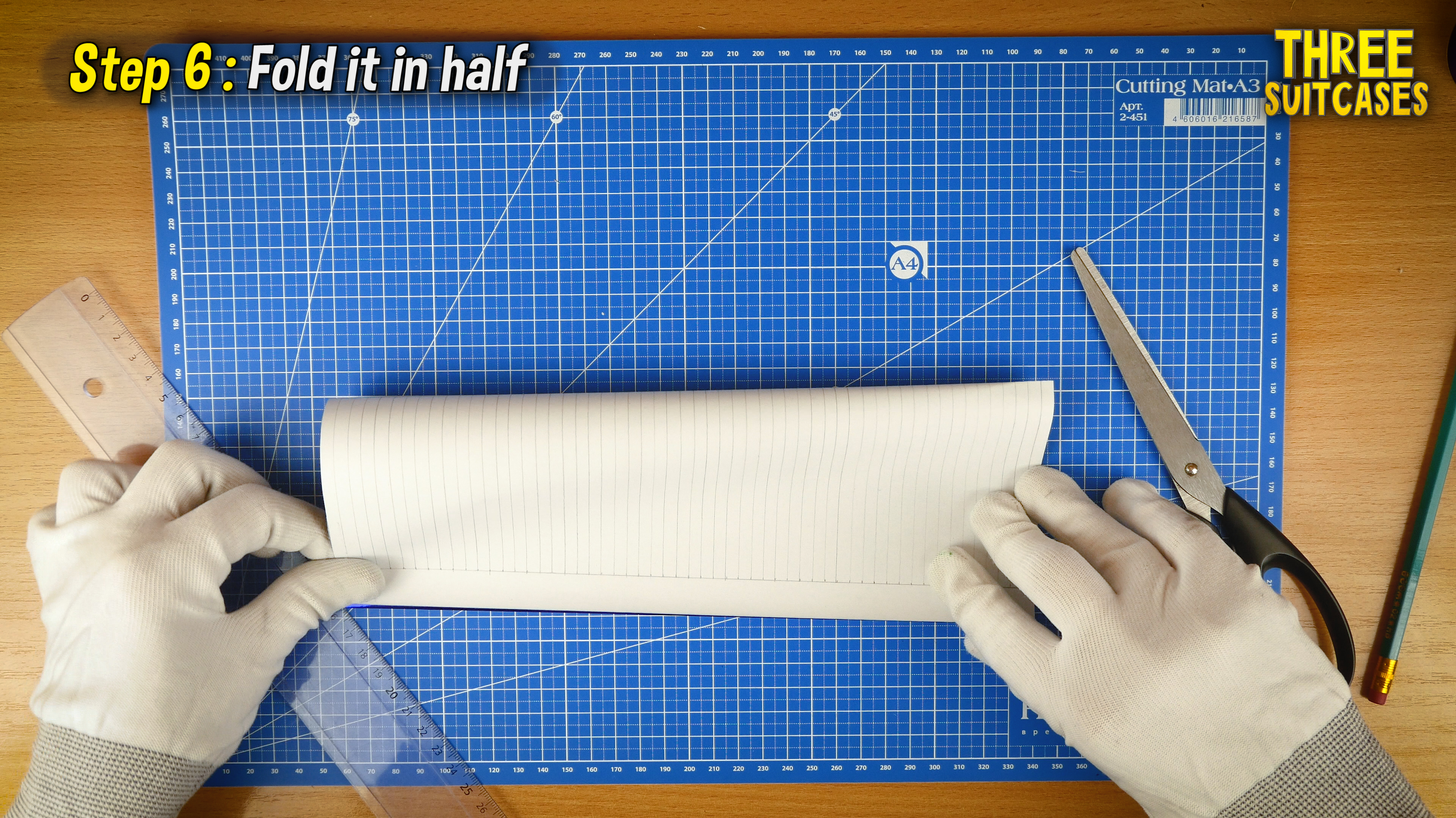 Picture of Fold It in Half