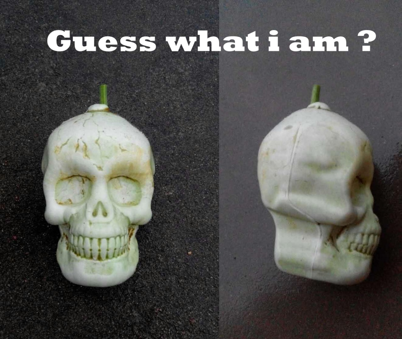 Picture of How to Make Skull Shape Fruit and Vegetables