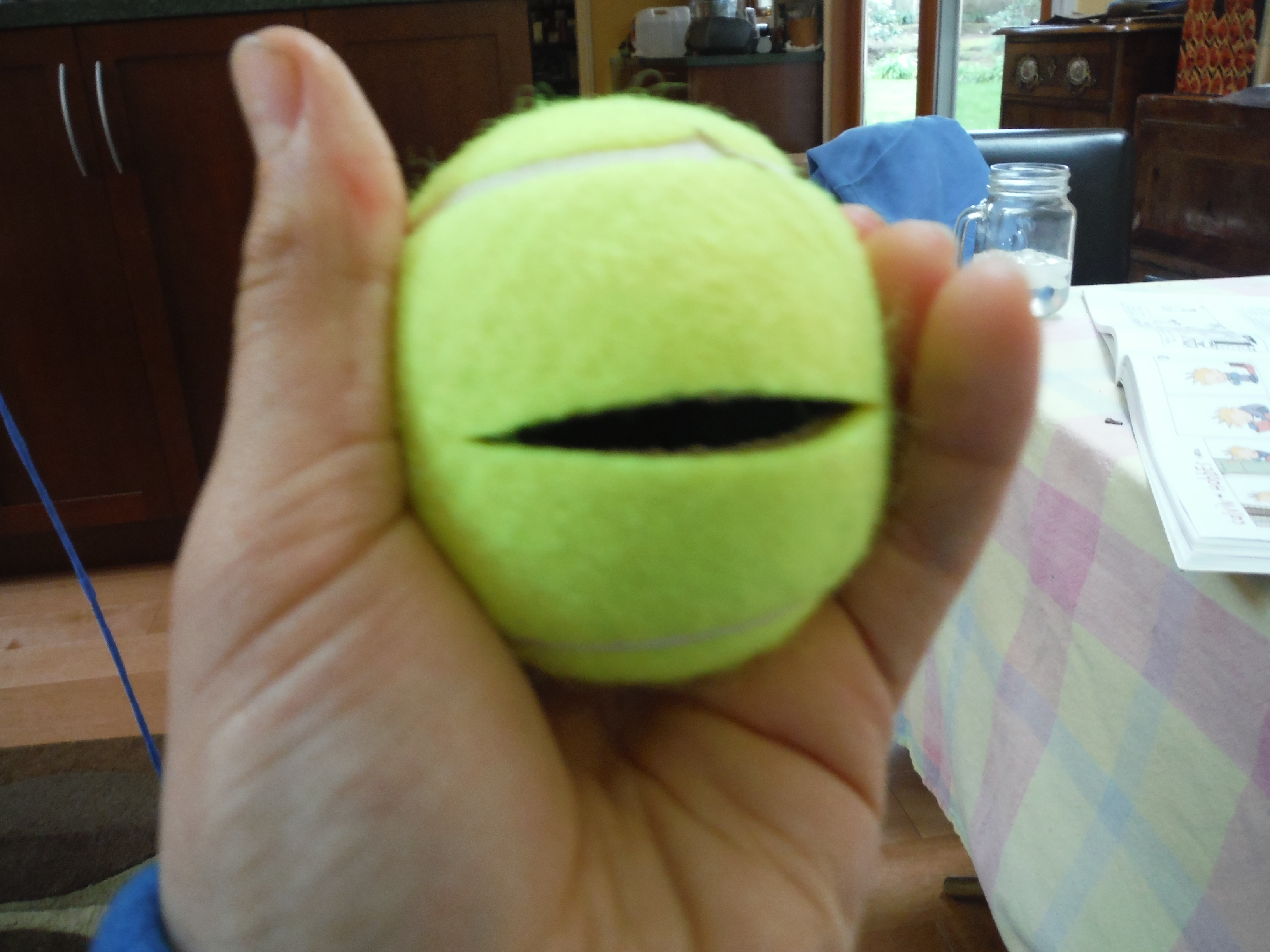Picture of Tennis Ball Secret Container