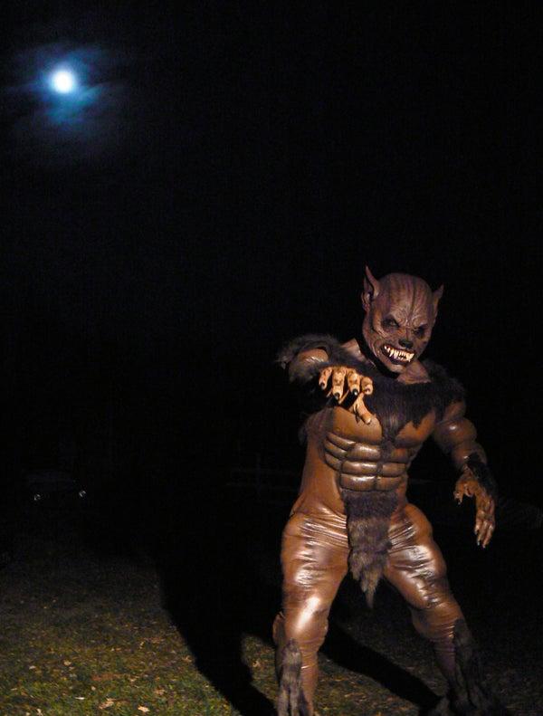 Werewolf Costume 2012