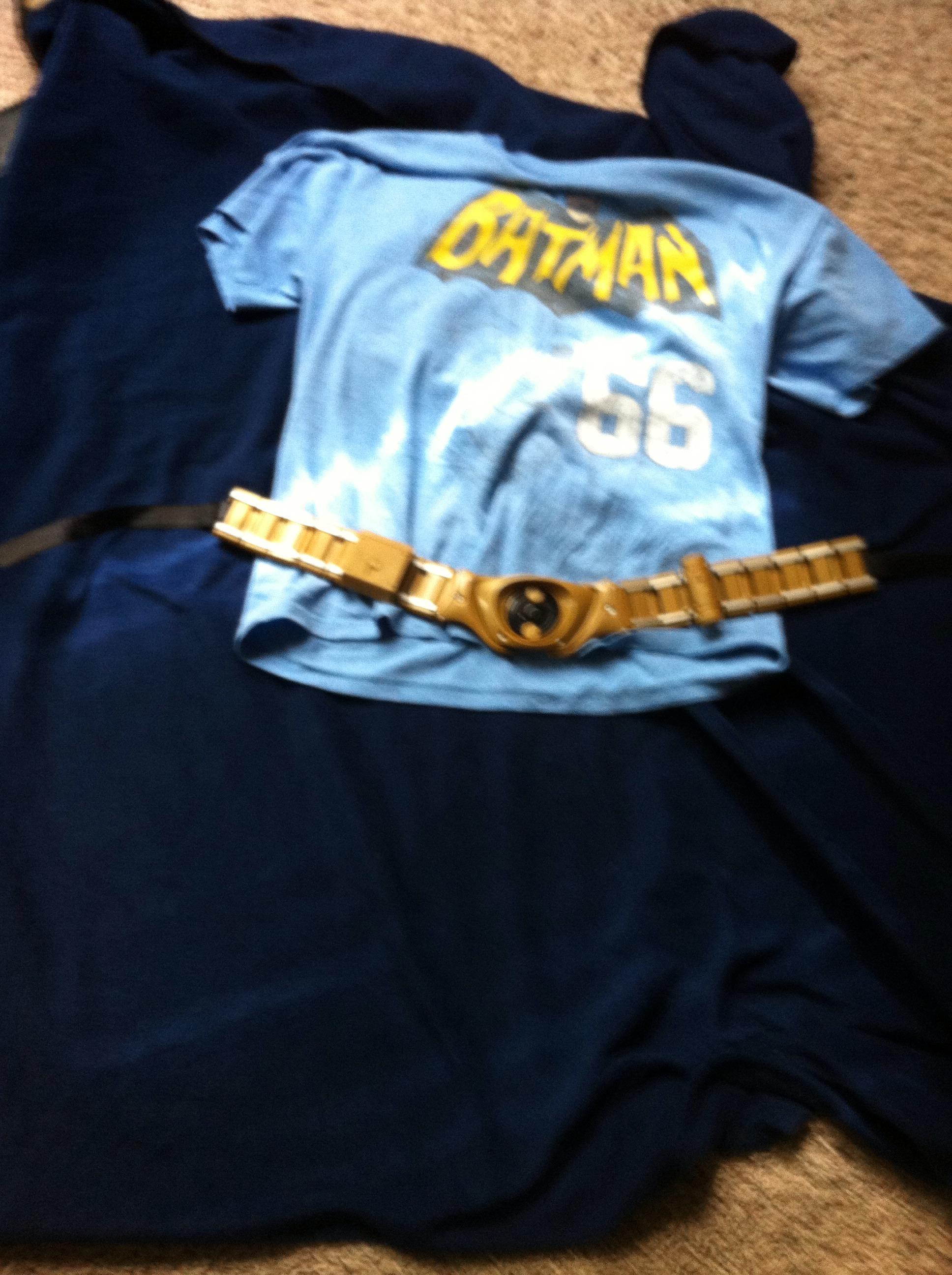 Picture of Lame Batman Costume