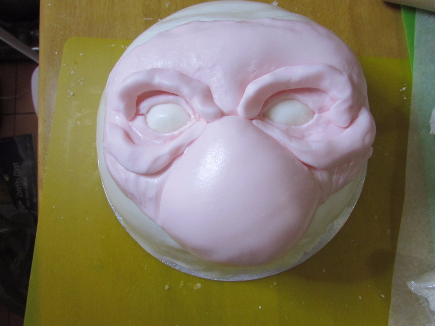 Picture of Sculpting the Face