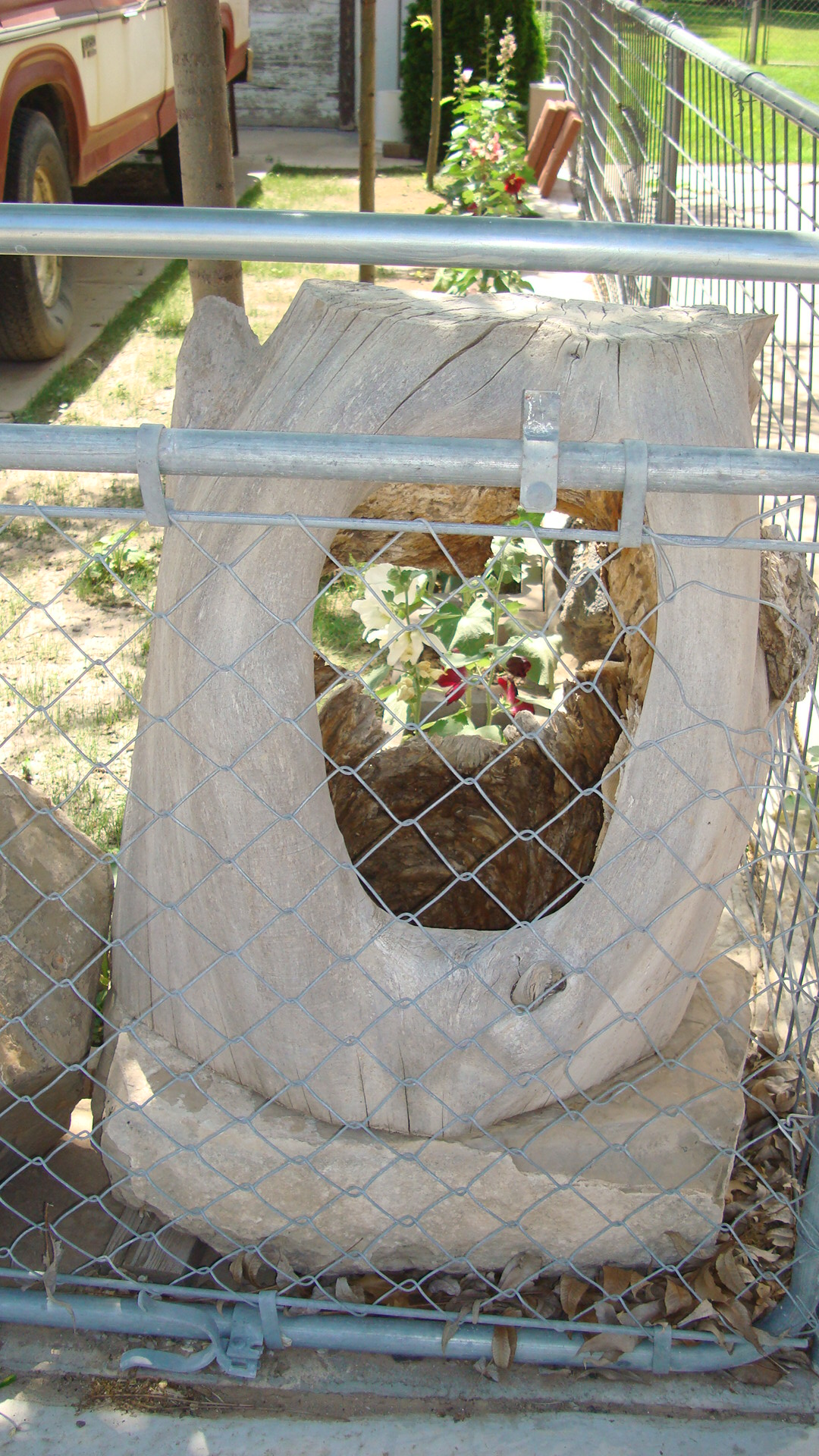 Picture of TREE TRUNK FOR FLOWER POT