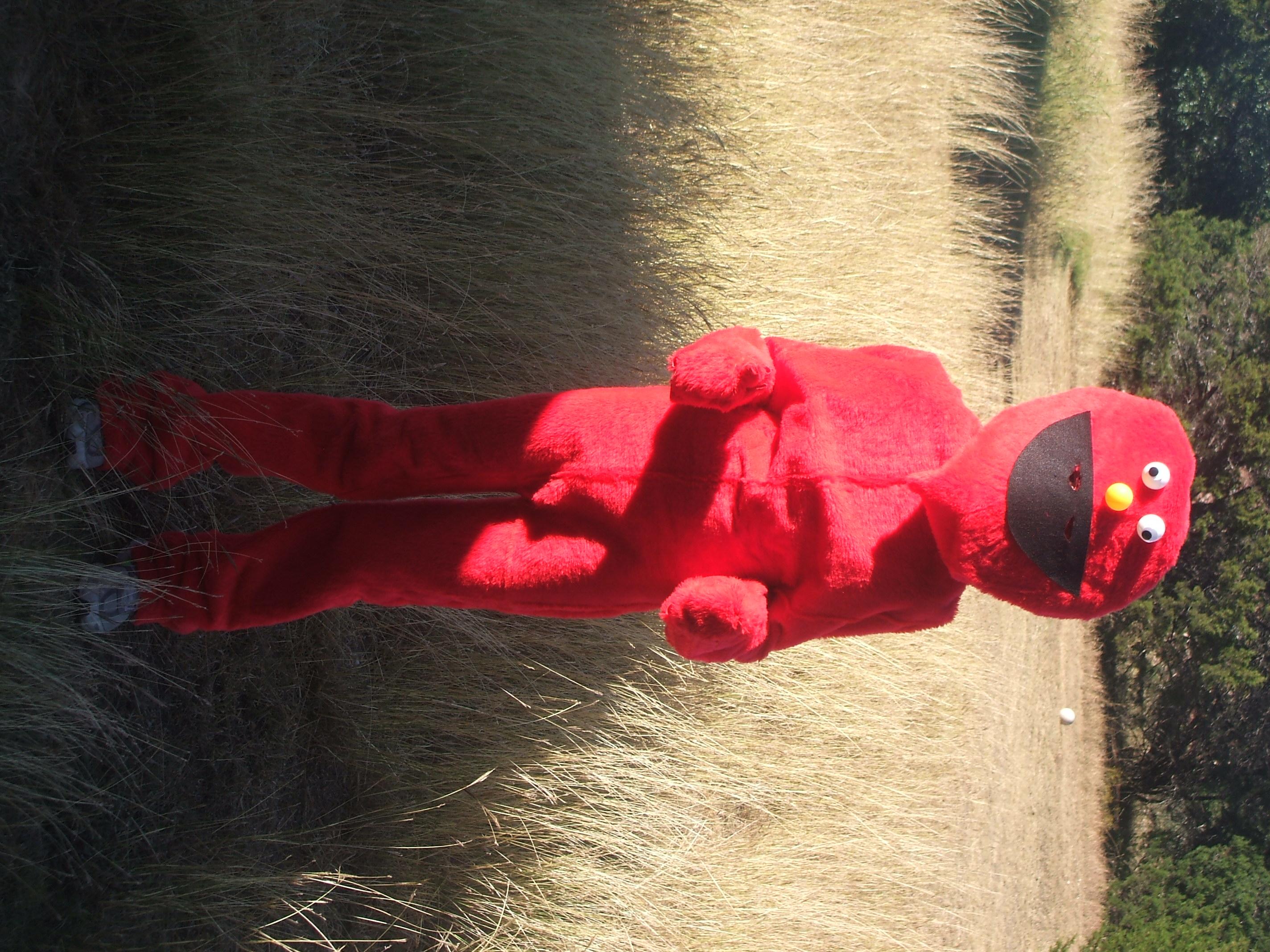 Picture of Elmo Costume