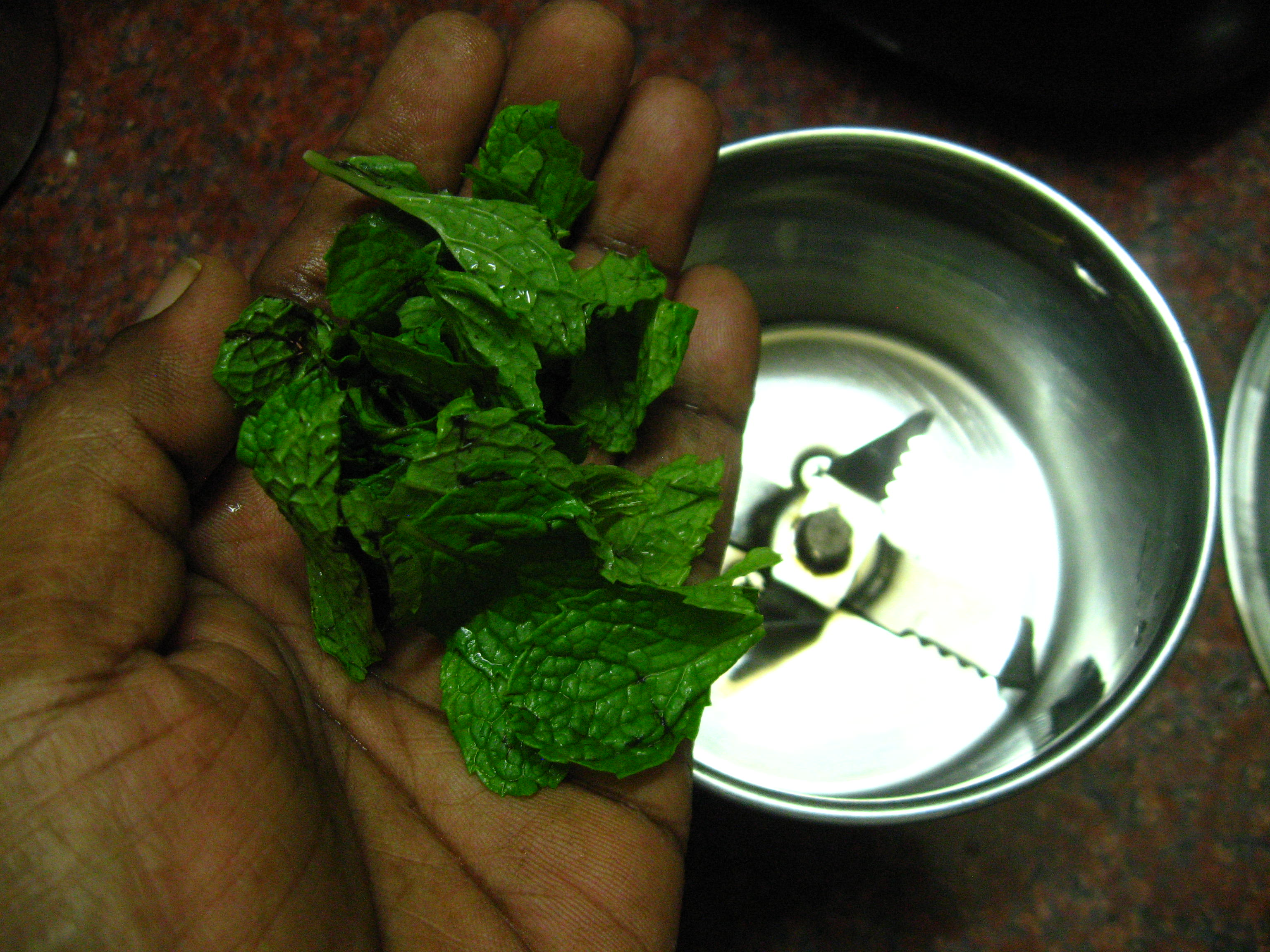 Picture of Extract Mint Juice