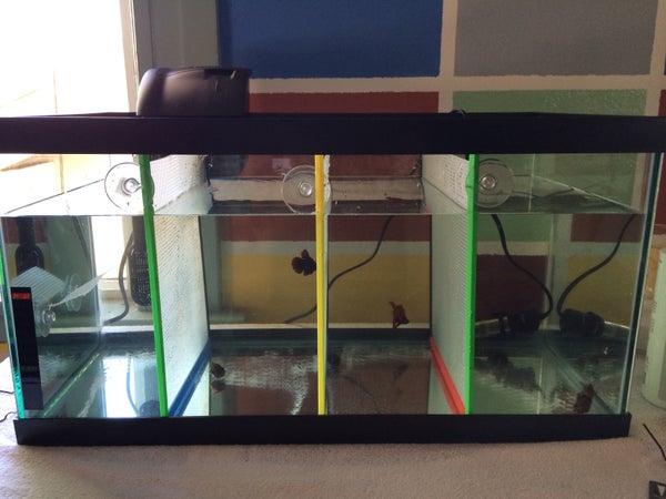 Fish Tank Dividers