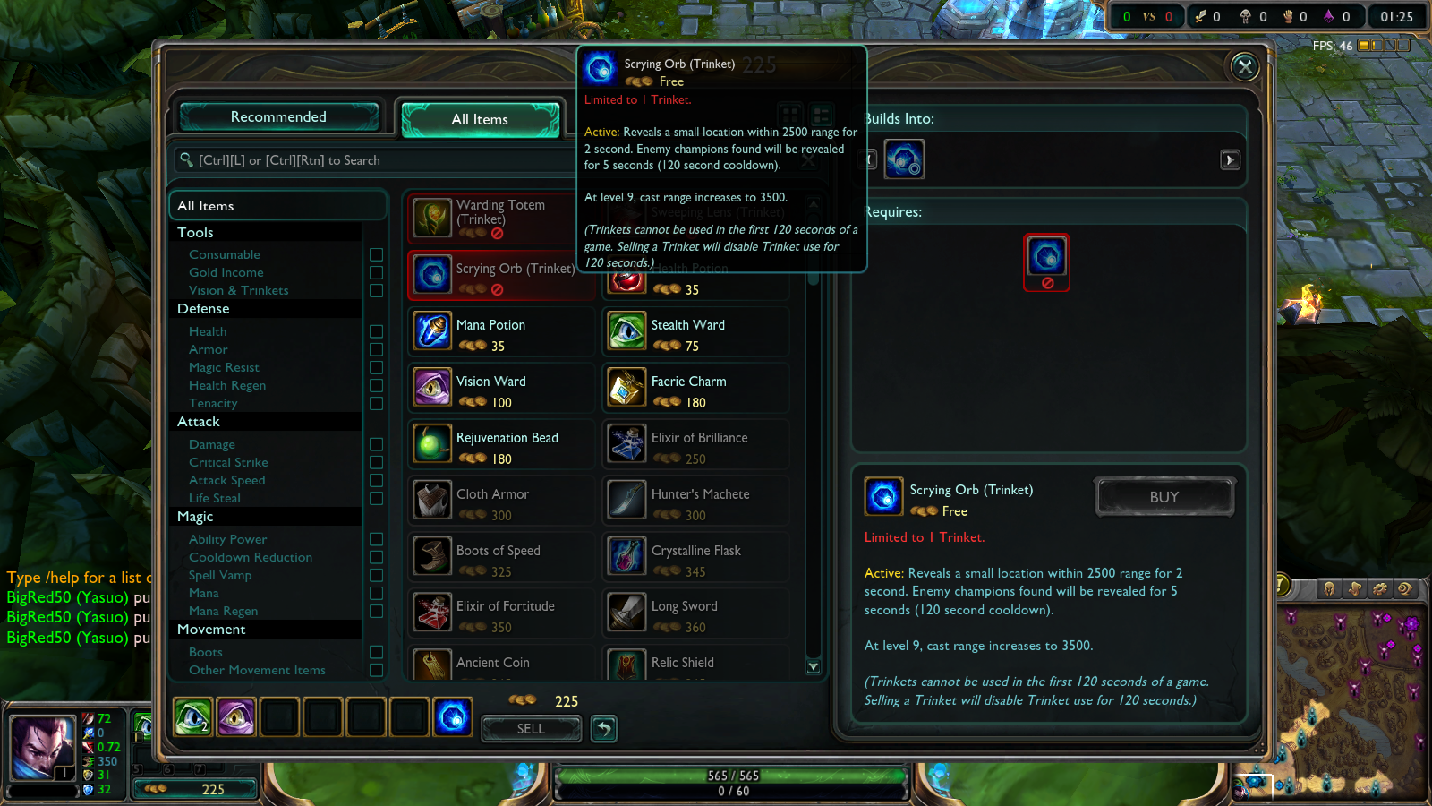 Picture of Buying Wards From the Store Part 3