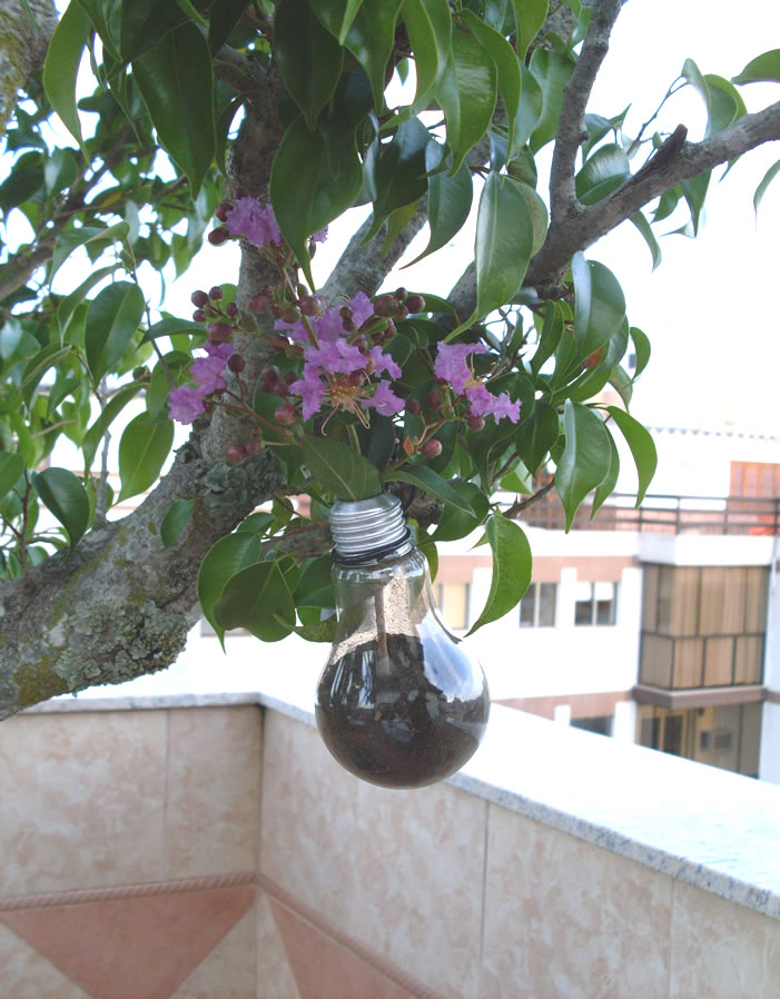 Picture of Pot Flower With Lamp Bulb