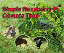 Simple Raspberry Pi Camera Trap Made From a Food Container