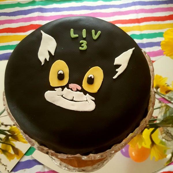 Katten Jansson Cake
