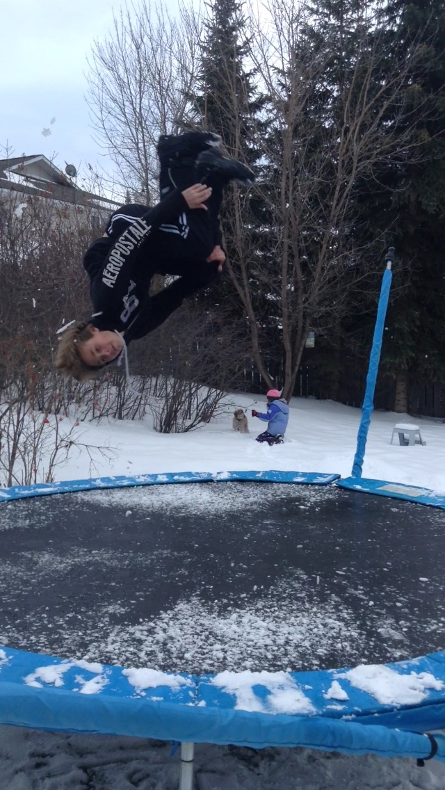 Picture of Backflip 180