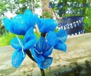 A FLOWER of BLUE Color