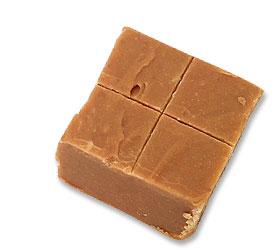 Picture of Fudge
