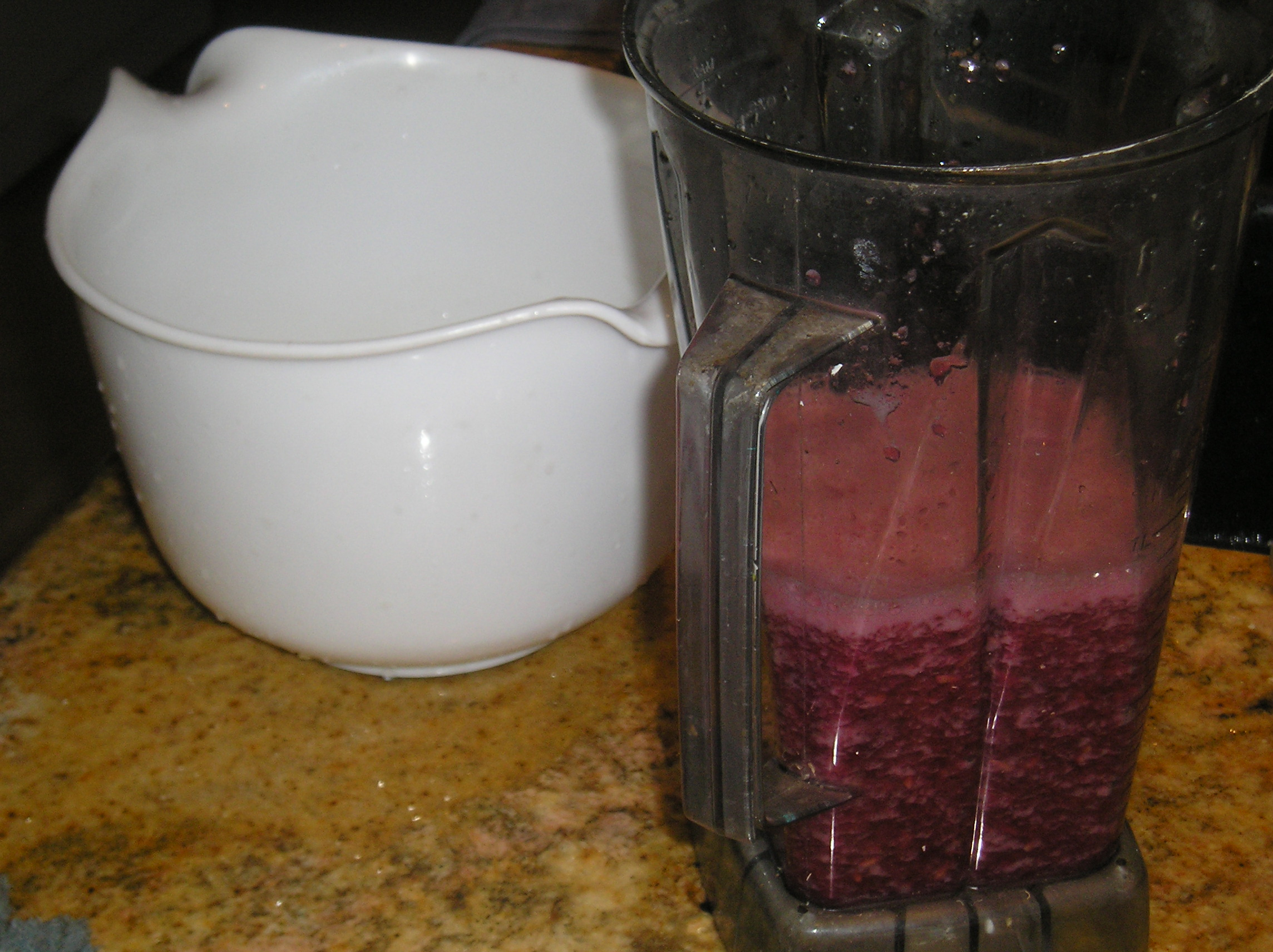 Picture of Use Blender to Rupture Seeds and Release Juice