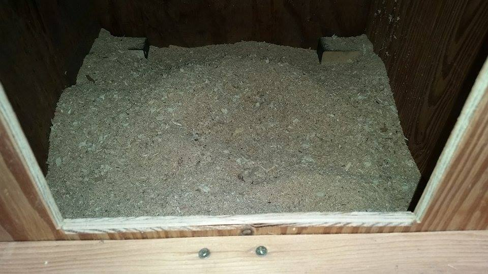 Picture of Bedding Installation