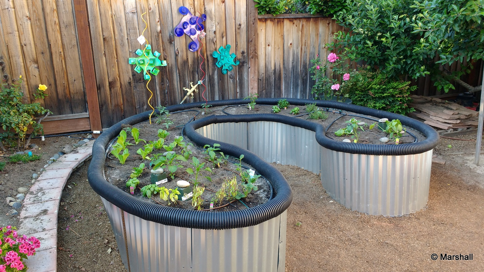 Picture of Raised Bed Garden From Roofing Sheet Metal