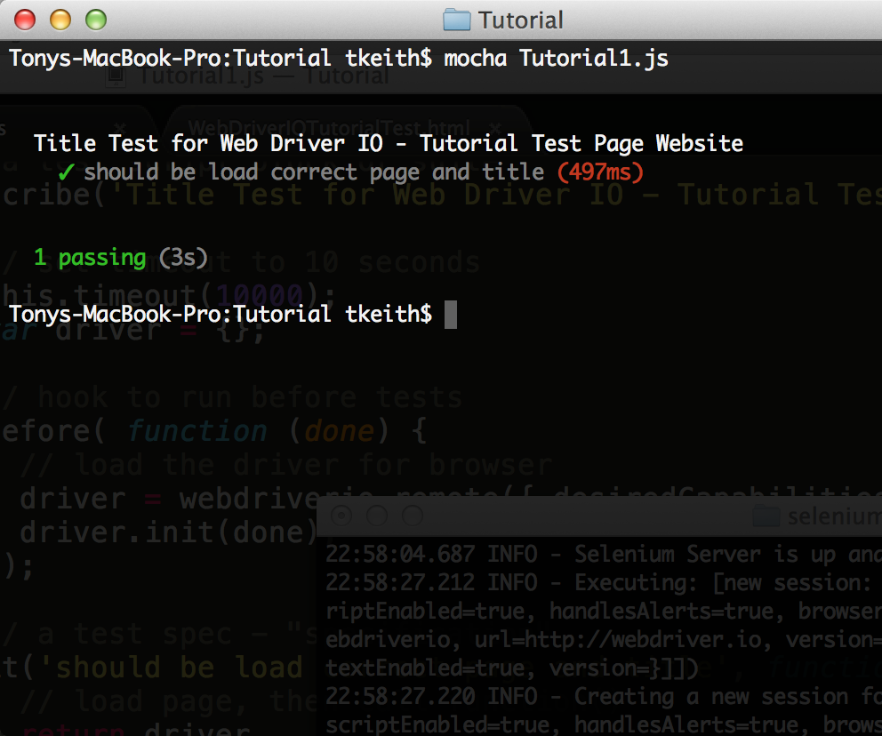 Web Driver IO Tutorial Using a Live Web Site and Working Examples: 8
