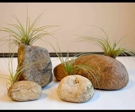 How to Make a Stone Air Plant Holder
