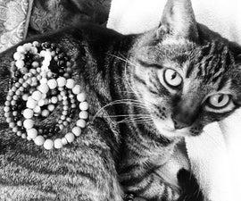 Black & White - Cell Phone Pet Photos, Part 2