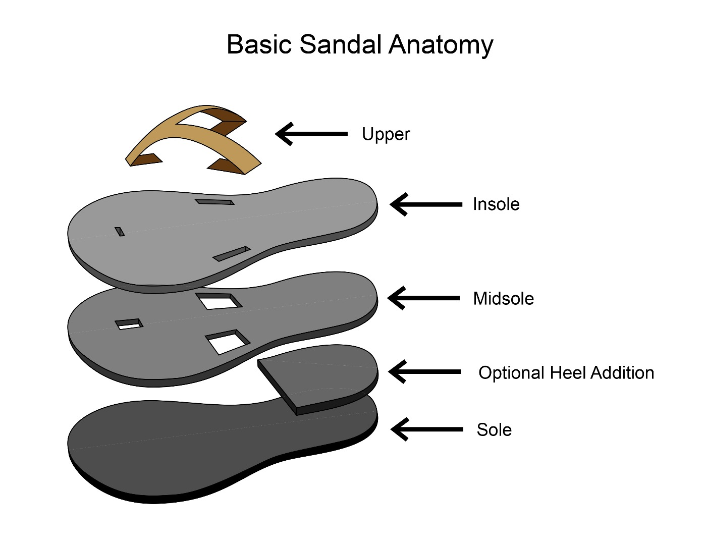 Picture of Sandal Anatomy