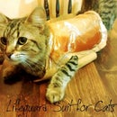 Lifeguard Suit for Cats