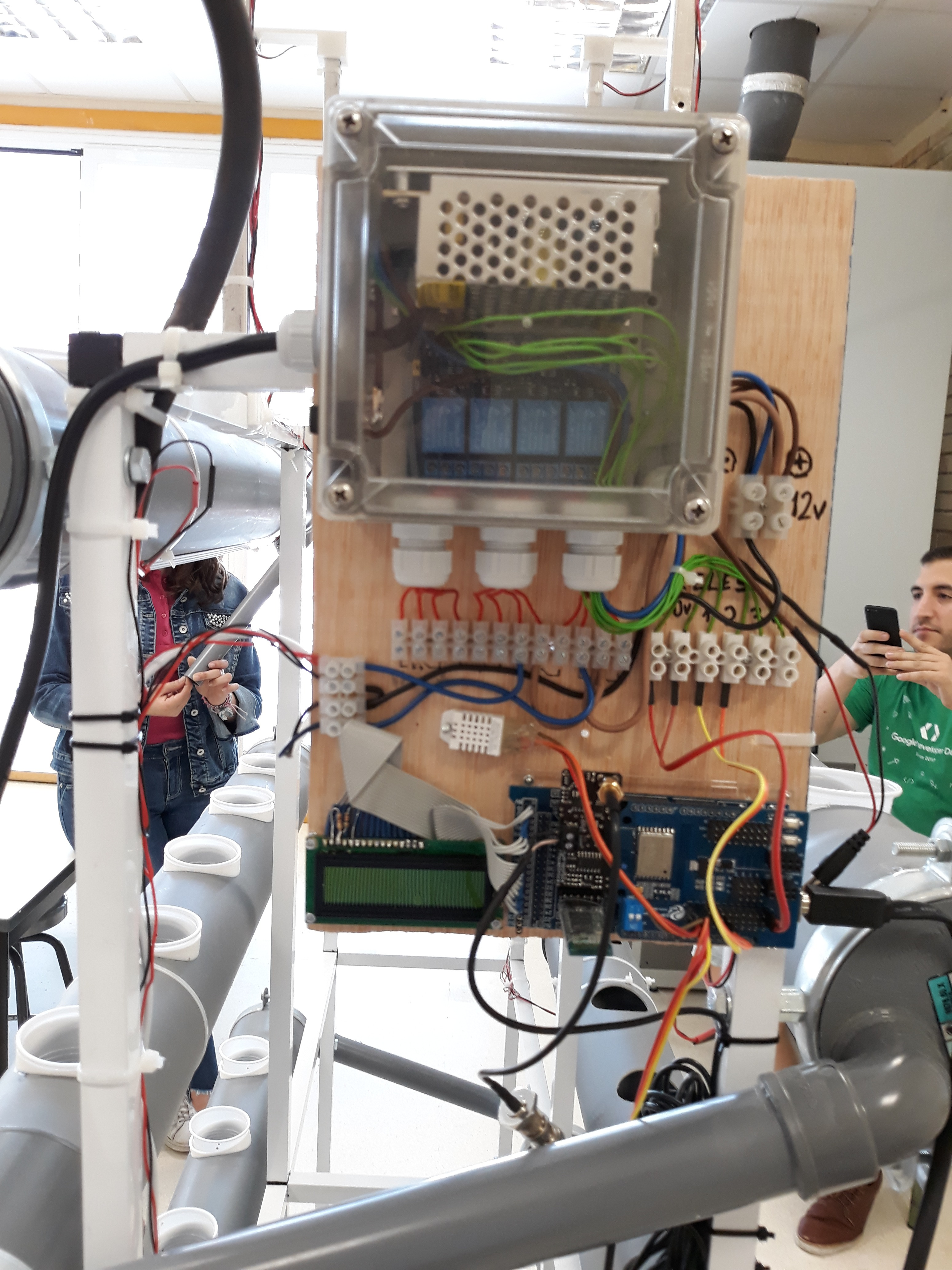 Picture of Hydroponic Working!
