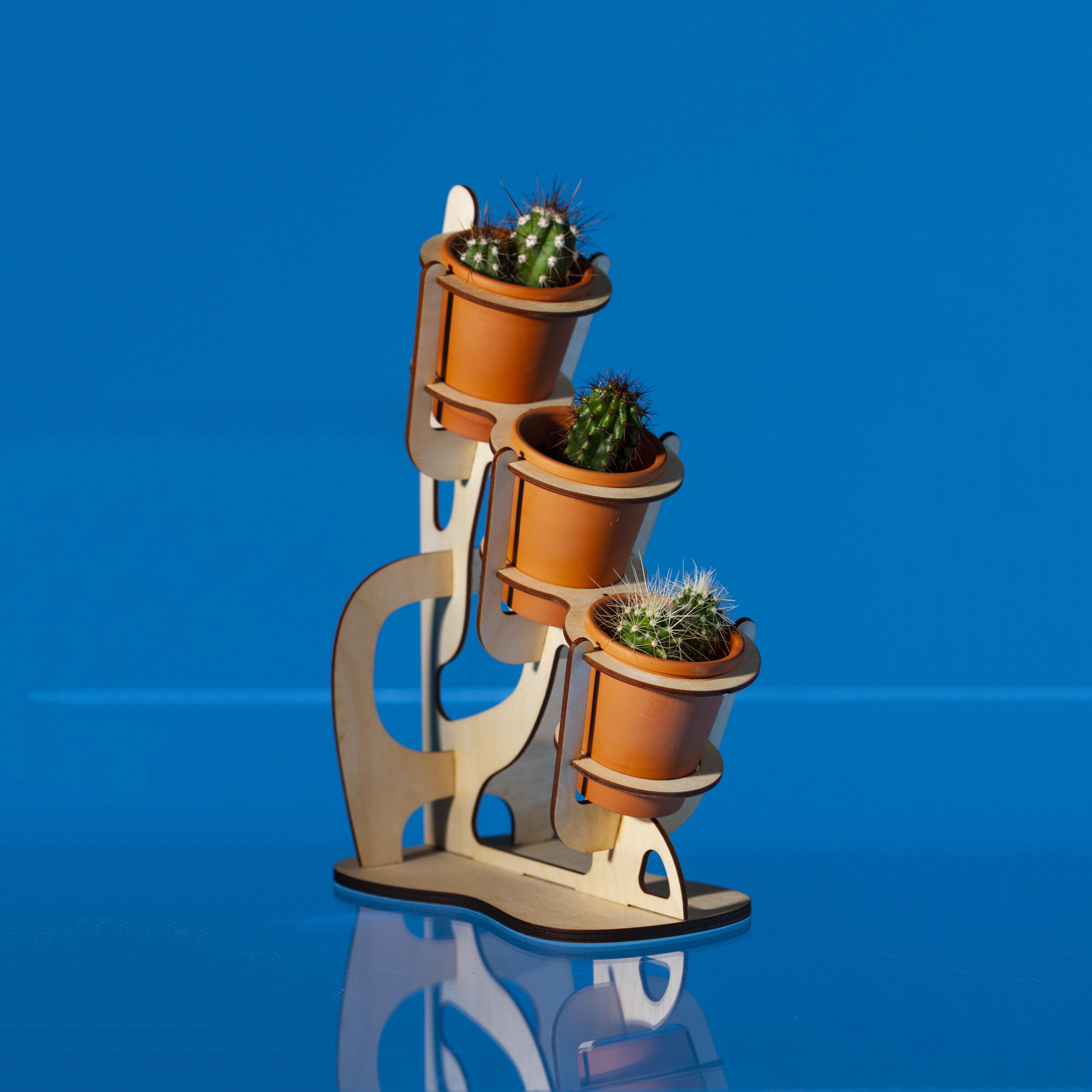 Picture of Laser Cut Cactus Planter