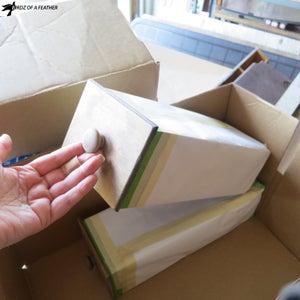 Paint Prep - Wrap Drawers