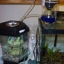 Drip Garden Aquarium Filter
