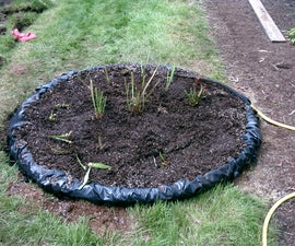 Build a bog for carnivorous plants in your backyard!