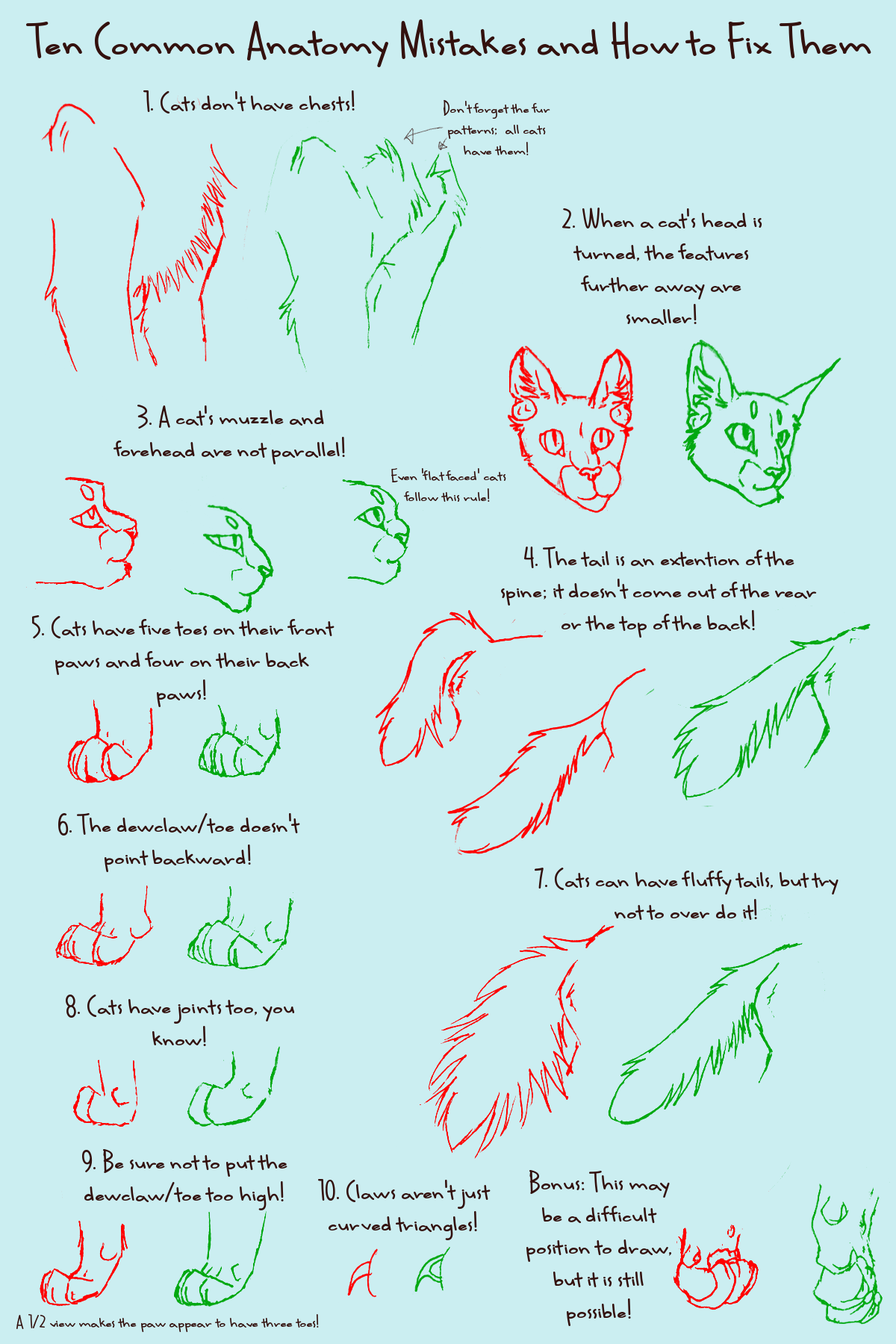How to Draw Anatomicaly Correct Manga Cats (it Can Be Done!): 12 ...