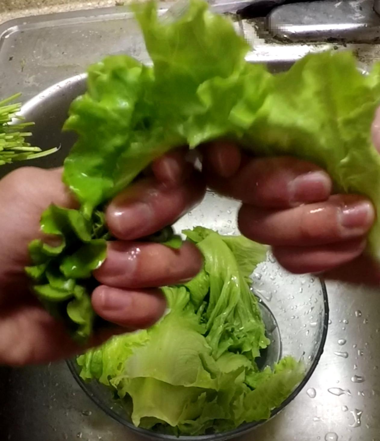 Picture of Main Procedures - Prepare Lettuce