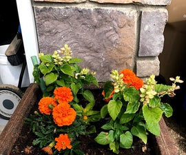 Turn Any Flower Pot Into a Self-wicking Planter