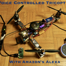 Voice Controlled 3D Printed Tricopter