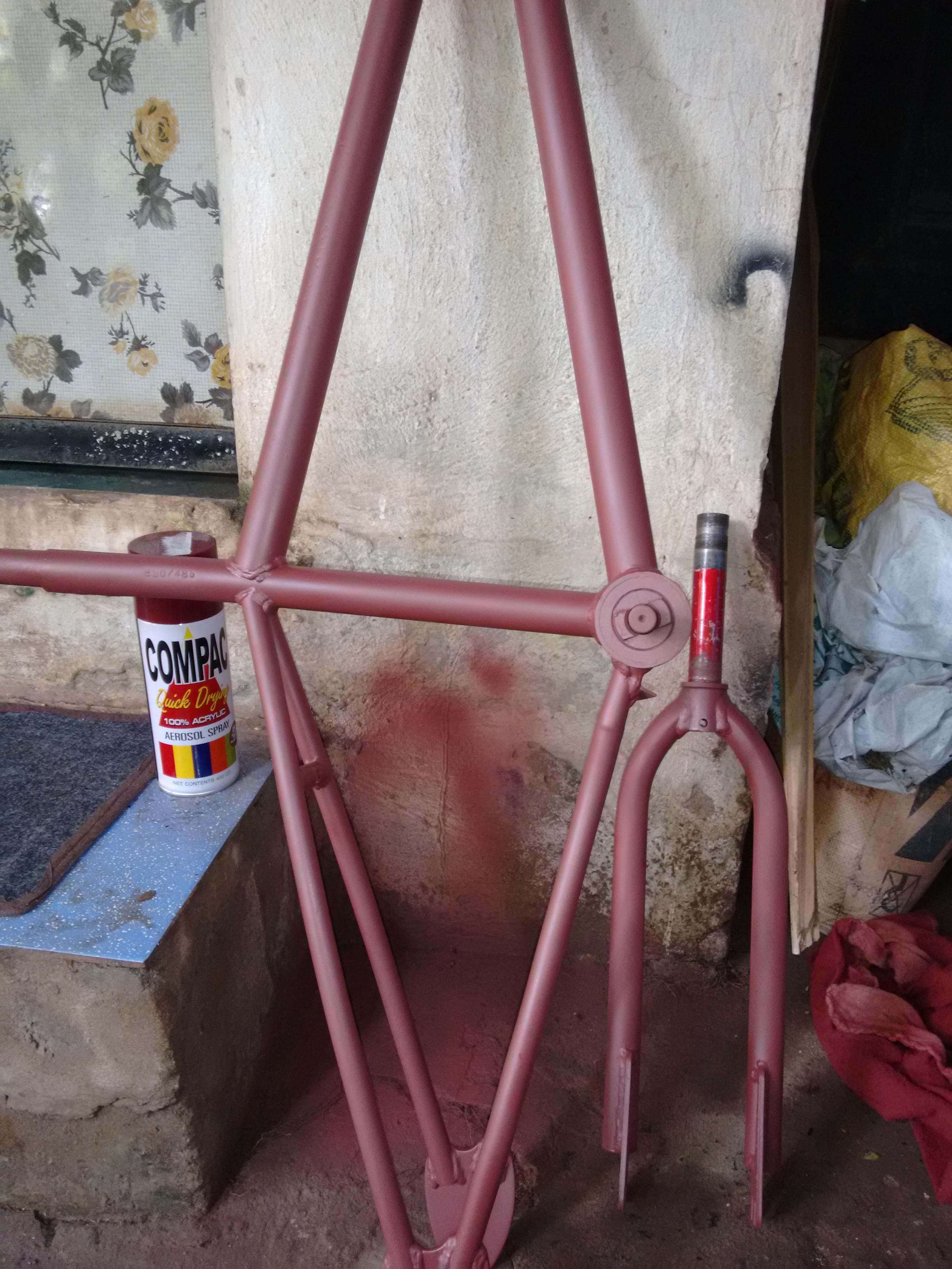 Picture of BMX Bike Custom Paint