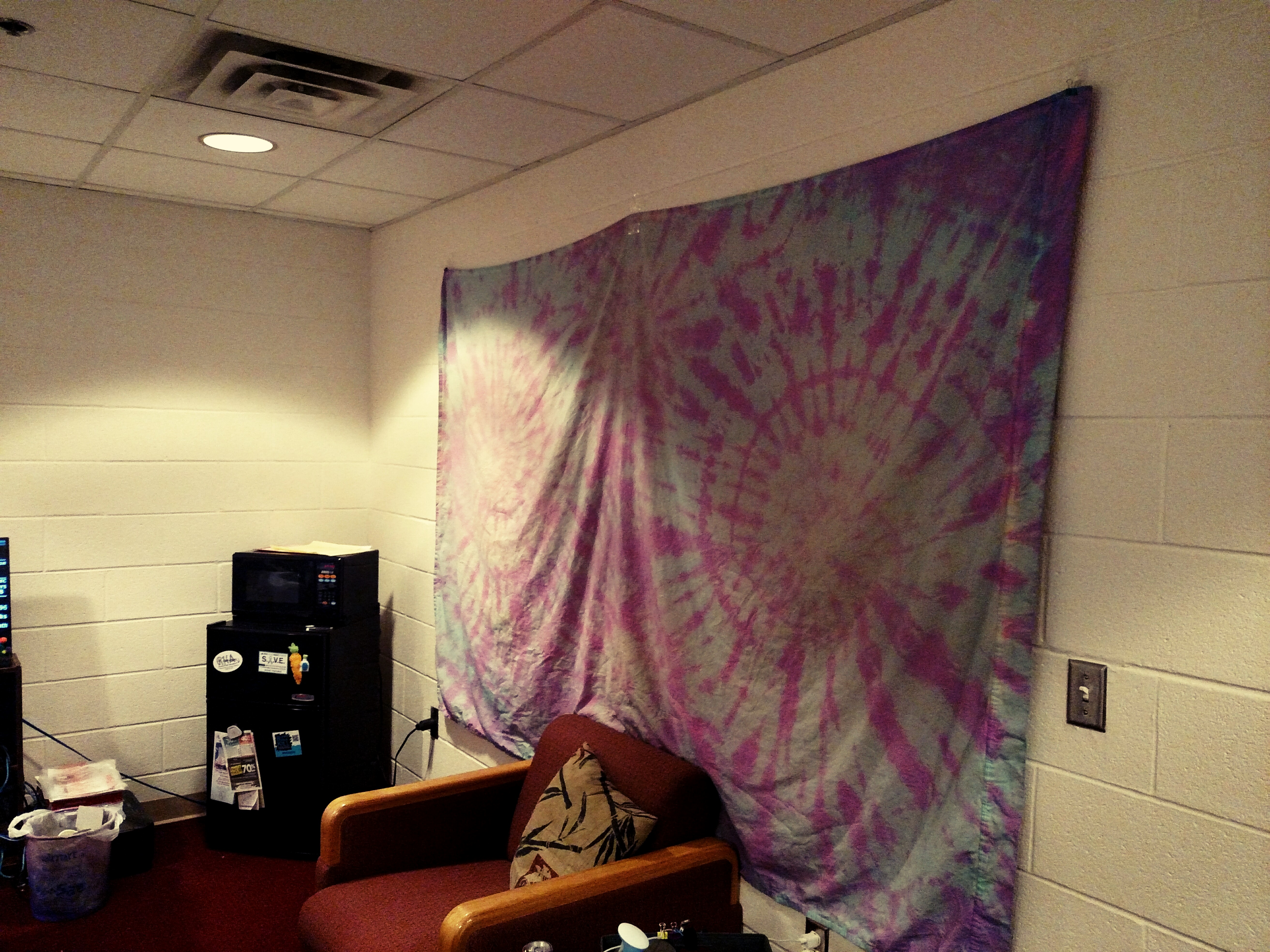Picture of DIY $7 Tapestry