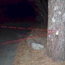 Driveway Intruder Alert With LinkIt One