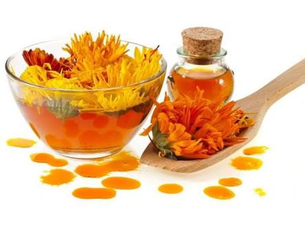 Picture of Calendula Salve for Eczema and Other Skin Issues