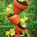 DIY express : vertical garden