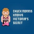 Chuck Norris and a Victoria's Secret - Free Cross Stitch PDF Pattern