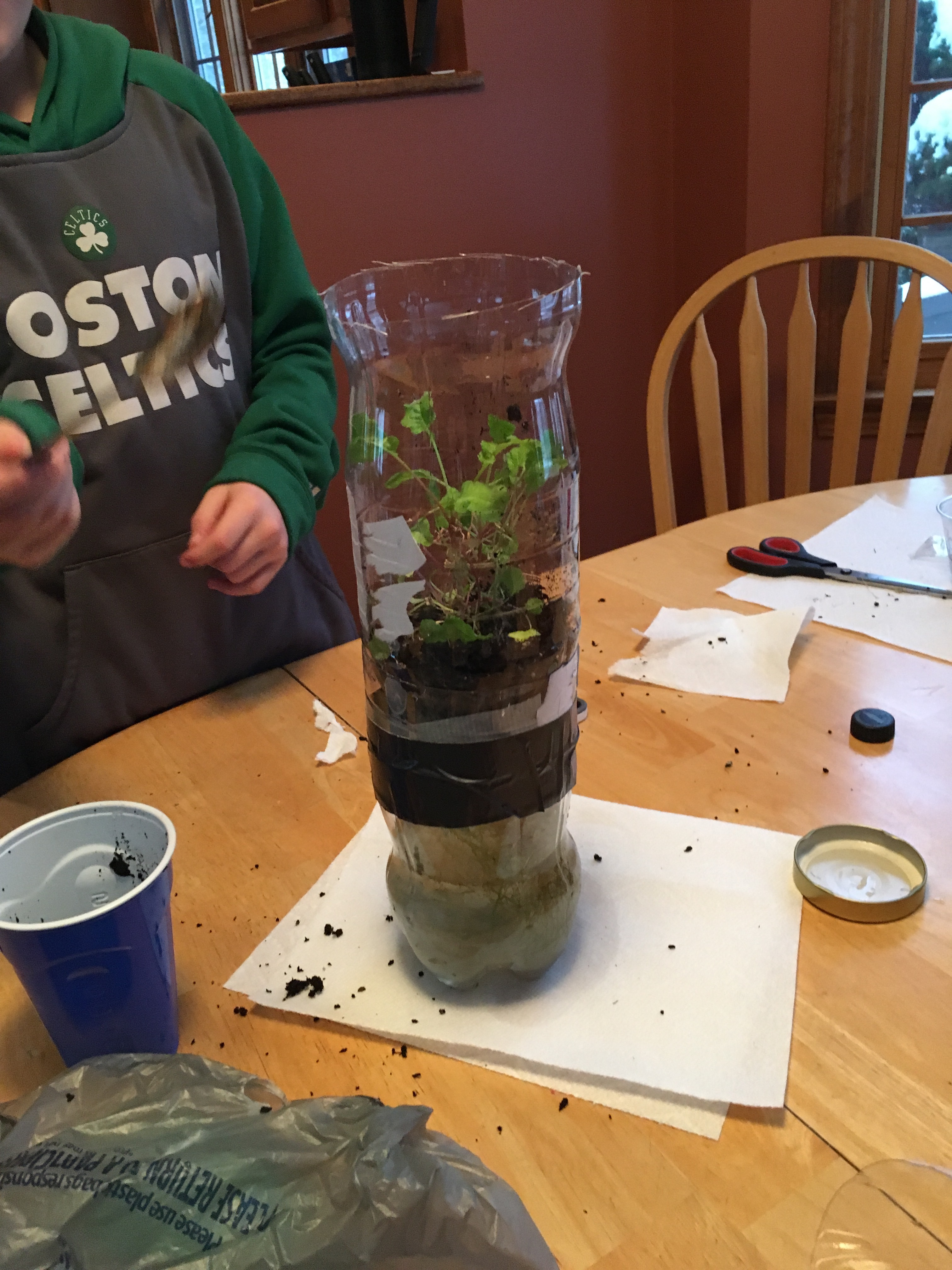 Picture of  Making the Plant Layer