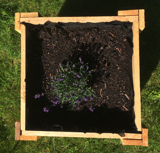 Fill the Flower Box With Fertilized Soil