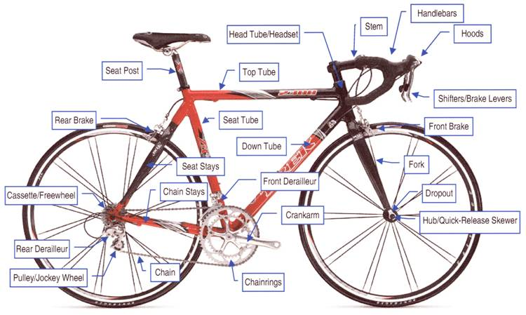 Picture of Inspecting Your Bike