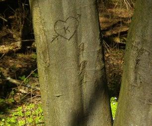 Digital Arborglyphs