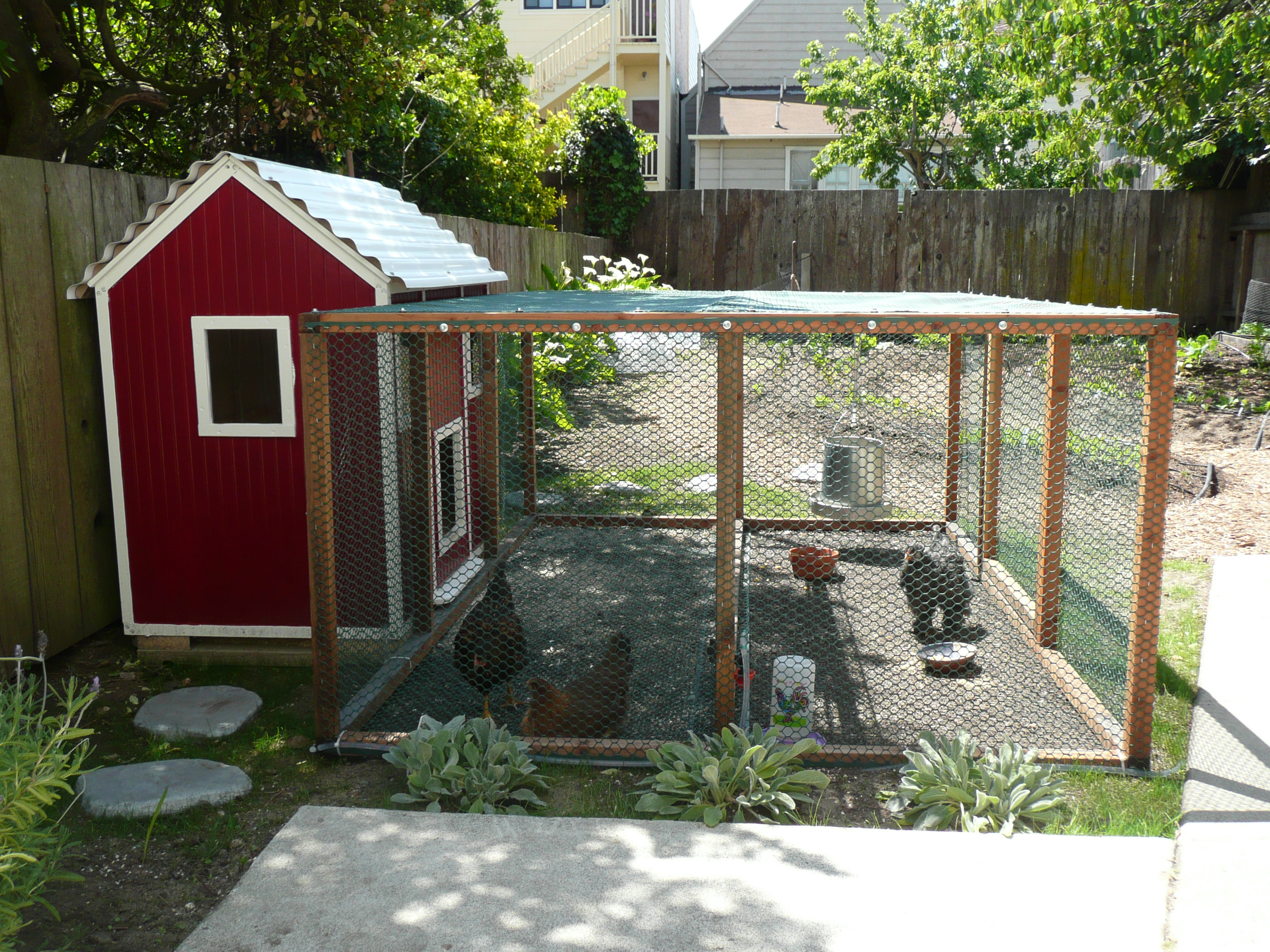 Picture of Urban Farming: Raising Backyard Chickens