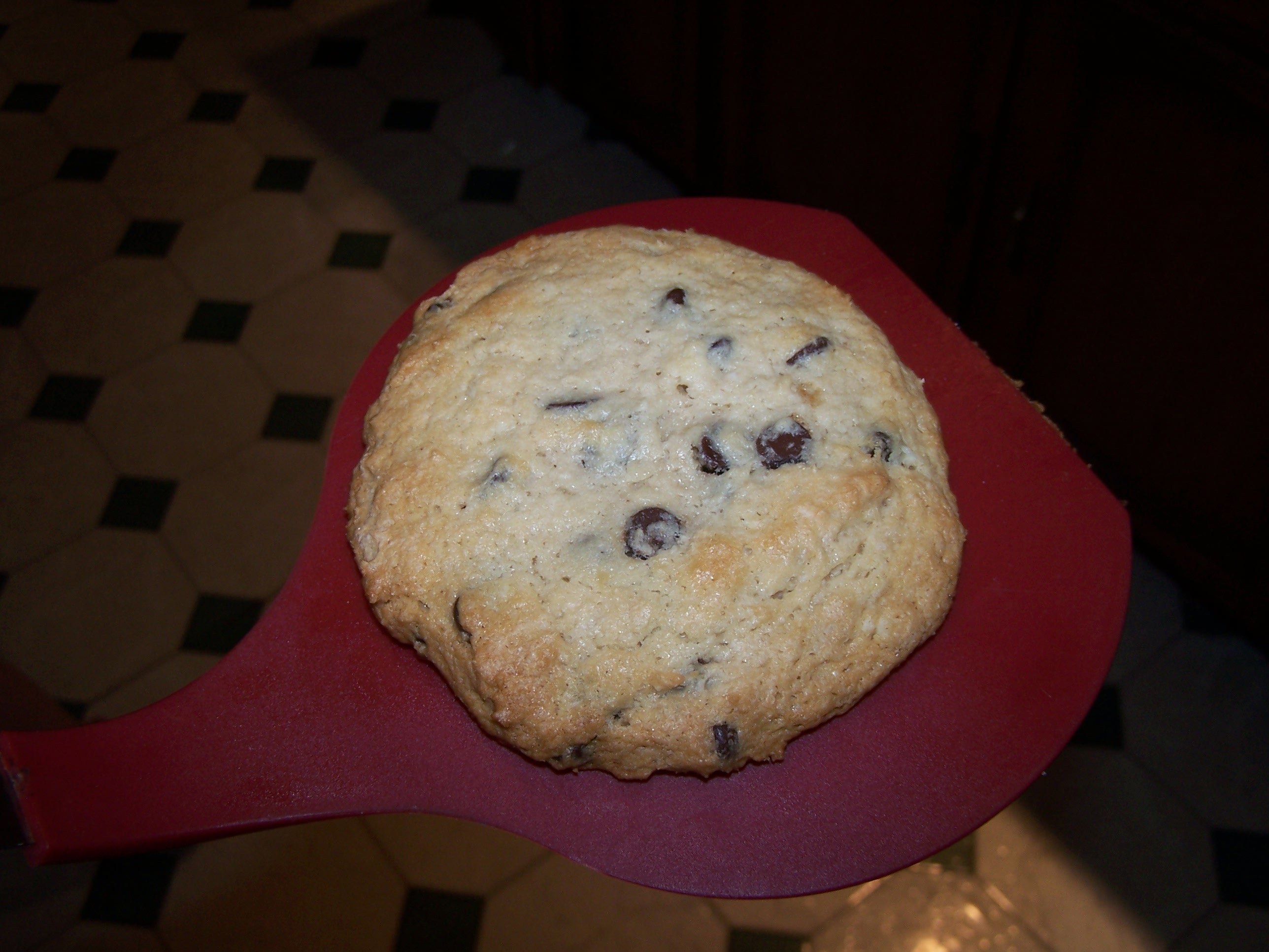 Picture of Chocolate Chip Cookie (The Single Cookie)