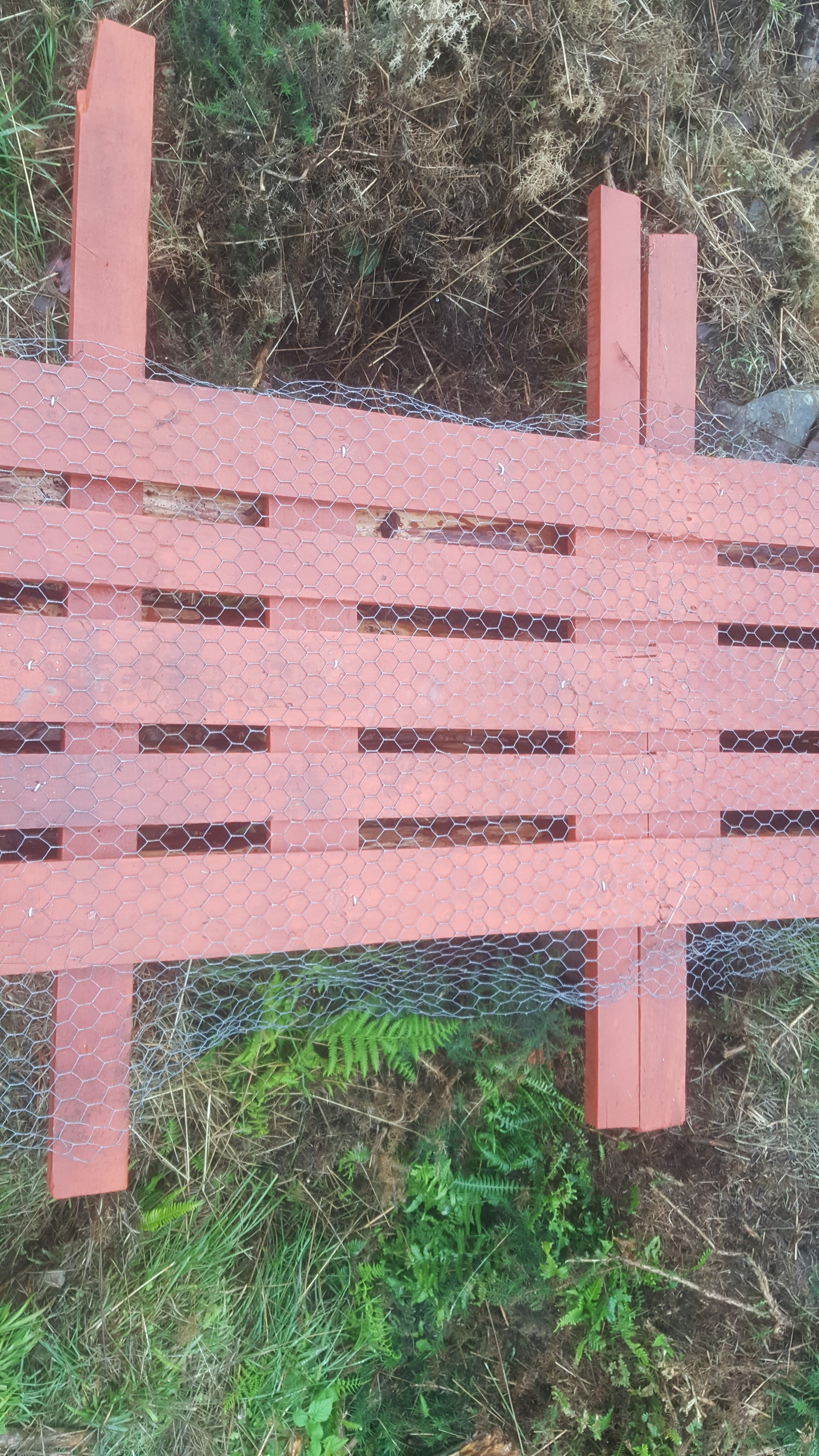 Picture of Chicken Wire Mesh for Grip