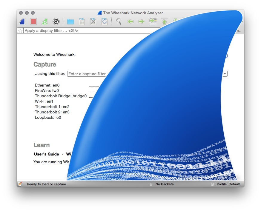 Picture of Wireshark Primer