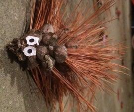 Porcupine Cones