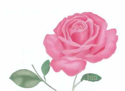 How to Color in a Rose Step by Step .
